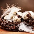 Quail eggs in nest on wooden table on brown background - Stock Photo