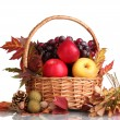 Royalty-Free Stock Photo: Beautiful autumn harvest in basket and leaves isolated on white