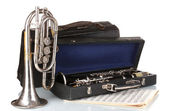 Antique trumpet and clarinet in case isolated on white — Stock Photo