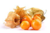 Physalis heap isolated on white — Stock Photo