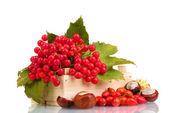 Czerwone jagody kalina w drewnianym pudełku, kasztany i wrzośca na białym tle na zielone świątki — Zdjęcie stockowe