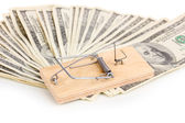Dollar banknotes and mousetrap isolated on white — Stock Photo