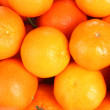 Beatiful tangerines closeup — Stock Photo
