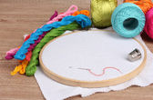 The embroidery hoop with canvas and bright sewing threads for embroidery in — Stock Photo