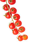 Beautiful cherry tomatoes on a branch isolated on white — Stock Photo