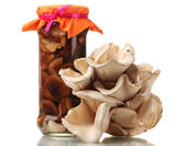 Delicious marinated mushrooms in the glass jars, raw oyster mushrooms isola — ストック写真