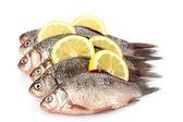 Fresh fishes with lemon isolated on white — Stock Photo