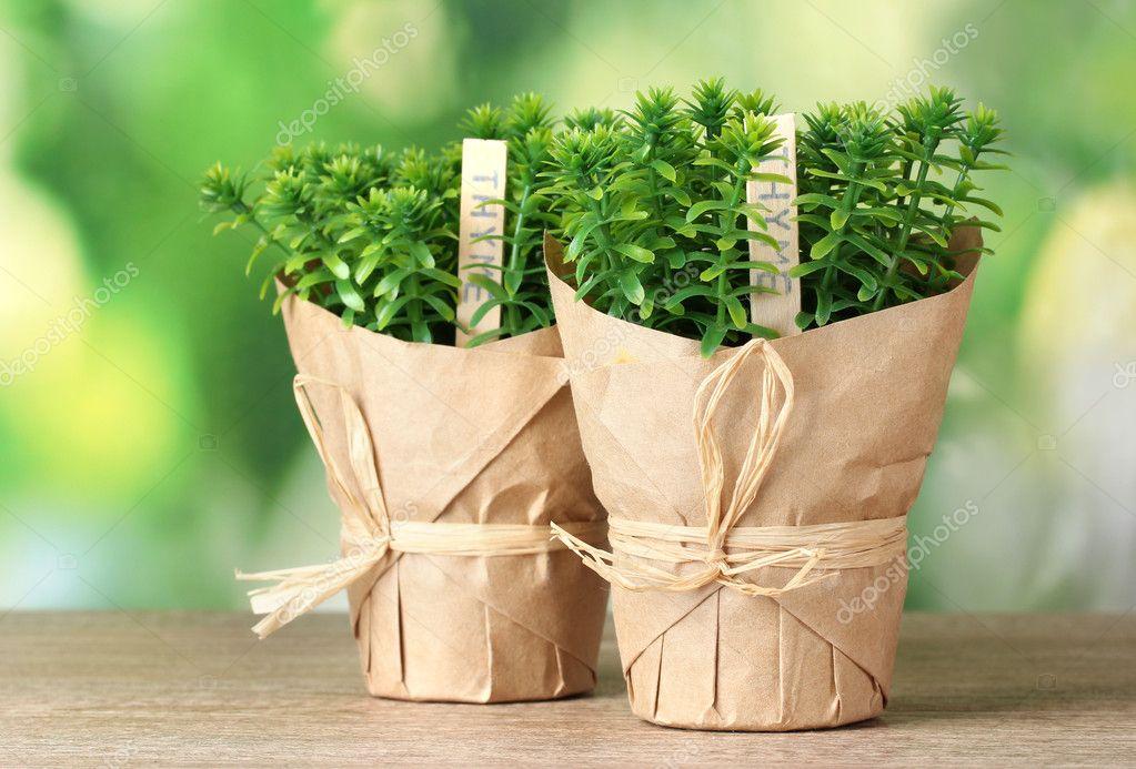 Упаковка горшечного растения своими руками 70