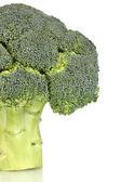 Fresh broccoli close-up isolated on white — Stock Photo