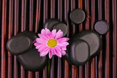 Spa stones and flower on bamboo mat — Stock Photo