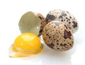 Quail eggs isilated on white — Stock Photo