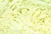 Chinese cabbage slice close-up isolated on white — Stock Photo