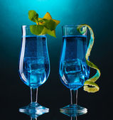 Blue cocktail in glasses on blue background — Stock Photo
