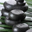 Spa stones with drops on green palm leaf on grey background — Stock Photo #9597204