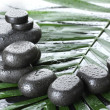 Spa stones with drops on green palm leaf on grey background — Stock Photo #9597213