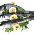 Stock Photo: Fresh fishes with lemon, parsley and spice isolated on white