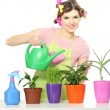 Beautiful happy young housewife watering plants in flowerpots isolated on white — Stock Photo
