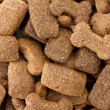 Background of dry dog food — Stock Photo #9694919