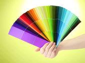 Mano che tiene la brillante tavolozza di colori su sfondo verde — Foto Stock