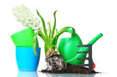 Beautiful hyacinth, soil, watering can and rake isolated on white — Stock Photo