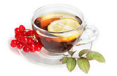 Black tea with red viburnum and lemon in glass cup isolated on white — Stock Photo