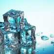 Melting ice cubes on blue background — Stock fotografie