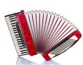 Retro accordion isolated on white — Stock Photo