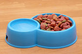 Dry dog food and water in blue bowl on the floor — Stock Photo