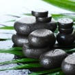 Spa stones with drops on green palm leaf on grey background — Stock Photo