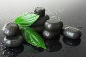 スパの滴と石し、灰色の背景上の緑の葉 — ストック写真