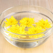 Stock Photo: Bowl with yellow flowers on wooden background