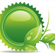 Ecology button - green leaves — Stock Photo #9818208