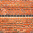 Brick Background — Stock Photo #10005309