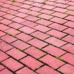 Garden stone path Brick Sidewalk — Stock Photo