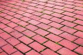 Acera de ladrillo camino piedra del jardín — Foto de Stock