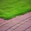 Garden stone path with grass, Brick Sidewalk — Stock Photo #9234629