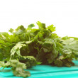 Twig of parsley isolated — Stock Photo