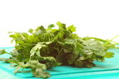 Twig of parsley isolated — Stok fotoğraf