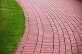 Sten trädgårdsgång med gräs, tegel trottoaren — Stockfoto