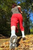 秋の森の国道十字の歩行の女性 — ストック写真
