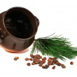 Royalty-Free Stock Photo: Crock, pine nuts and pine branches on a white background