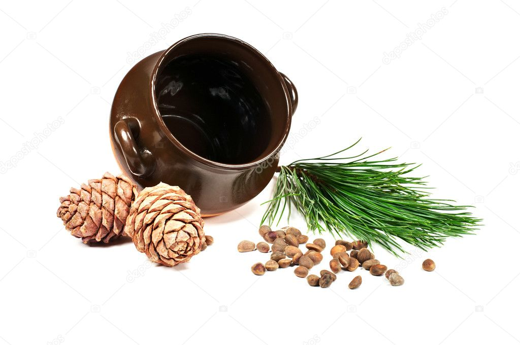 Pot, pine nuts, cones and pine branches on a white background  Stock Photo #8741656