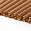 Close-up cigarette on a white background — Stock Photo