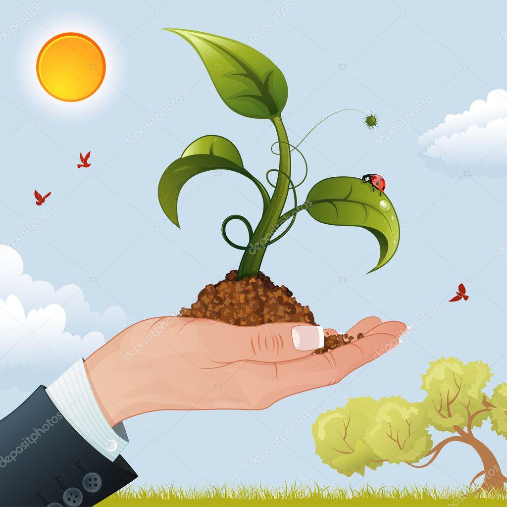 种子发芽插画:种子发芽过程动画:种子发芽卡通图片