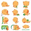 Cute cat different positions — Vector de stock #10138334