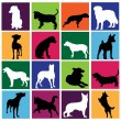 Stock Vector: Dog set