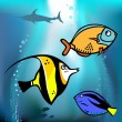 Royalty-Free Stock Imagen vectorial: Fish graphic