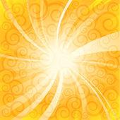 Summer sunlight — Stock Vector