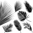 Tropical leaf set — Stock Vector