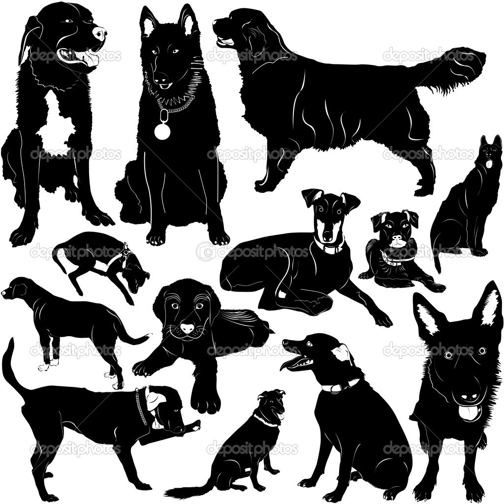 Dog vector with details set  Stock Vector #8804824